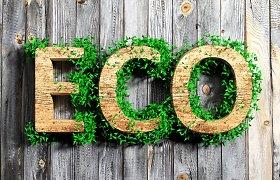 Su Vakarų įmonėmis konkuruoja ekologiškumu