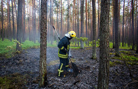 Pabradėje vykstant pratyboms išdegė 1,2 ha miško paklotės