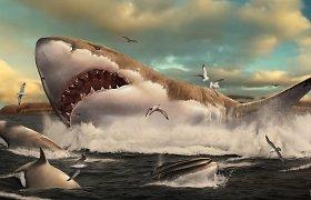 Didžiausi istorijoje rykliai brolius ir seses išskersdavo dar net negimę
