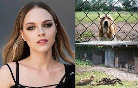 Gyvūnų skriaudėjams – kalėjimas? Įvykių Lietuvoje šokiruota E.Young – apie sankcijas Kalifornijoje