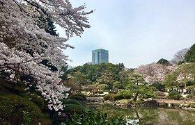 Ugnė Skonsmanaitė Japonijoje