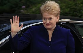 Lithuanian president going to EU meeting on Ukraine