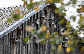 Valiaus Mažulio ūkis Širvintų rajone