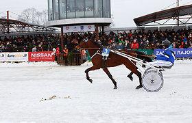 Valstybės atkūrimo 100-mečiui skirtose lenktynėse – 100 žirgų