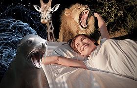Tarptautinė miego diena: mokslu paremtos įdomybės ir atsakymai, kodėl ne veltui pramiegame trečdalį gyvenimo