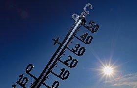 Planetos atšilimas tęsiasi: 2020-aisiais baigėsi karščiausias dešimtmetis