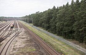 Lietuvos žaliųjų partija ragina teisiškai įtvirtinti Girulių miško apsaugą