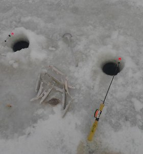 Klaipėdoje ties Kiaulės Nugaros sala įlūžo žvejys