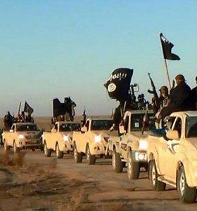 """Mokesčiai ir gamyklos džihadistų """"kalifatui"""" suneša milijardus"""