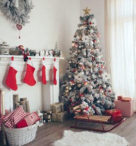 Paslaugos.lt: Ar jau namuose kvepia Kalėdomis?