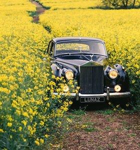 """Nauja mada: klasikinius """"Jaguar"""" ir """"Rolls-Royce"""" paverčia moderniais elektromobiliais"""