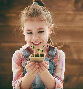 Pavasaris jau kviečia ruoštis daržo darbams