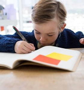 Pataria: jeigu jūsų vaikas namų darbus ruošia kelias valandas, prestižinė mokykla – ne jam