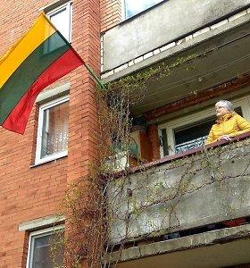 Kaimynus sukiršino valstybinė vėliava