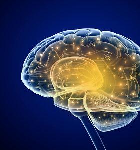 Sukurtas nuotolinis pultelis smegenims – kada pradėsime jį naudoti?
