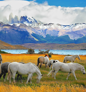Kai gamta užhipnotizuoja: gražiausi Centrinės ir Pietų Amerikos nacionaliniai parkai