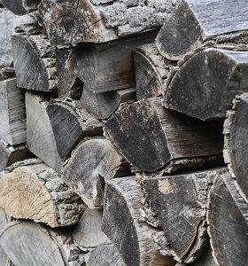 Šilutės rajone išpjauta ir pavogta mediena