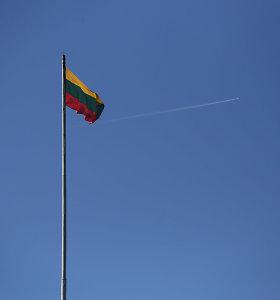 10 mokslininkų siūlo minėti Lietuvos dieną