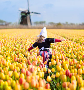 Nyderlandai nebenori vadintis Olandija