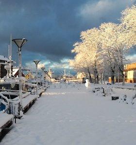 Žiemos pasaka: Klaipėdą per naktį užklojo sniegas