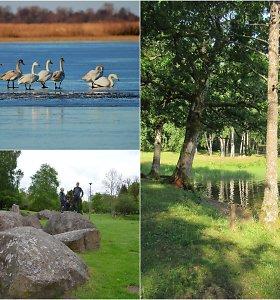 Netikėti Lietuvos kraštovaizdžio perlai – milžiniški ledynmečio riedulynai, stepės ir miškai