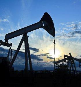 Naftos kainos vėl pasuko žemyn