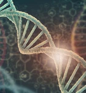 Didelio DNR tyrimo išvados: vieno homoseksualumo geno nėra