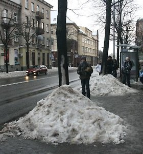 Klaipėdoje – Akacijų ir Jazminų gatvės