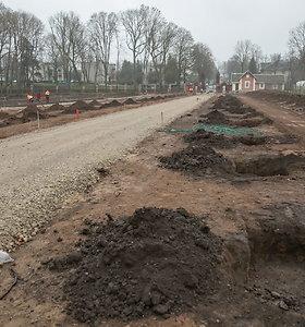 Trakų Vokės dvaro teritorijoje sodinamos 175 liepos