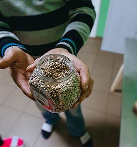 """""""Lietuviško aukso"""" gavyba - suvalkiečių ūkininkų šeimos hobis"""