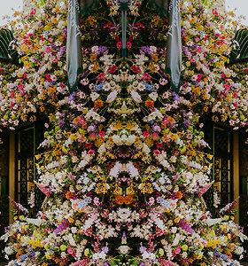 Manto Petruškevičiaus gėlių dekoras Stiklių gatvėje