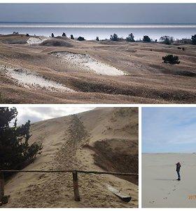 Cvbankas.lt: nuotykių ir jūros vėjo kupinas kopų sargo darbas – kai kurie pažeidėjai susipranta tik po dviejų mėnesių