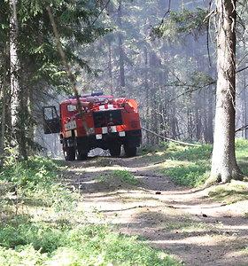 Gėjaus miške kilęs gaisras užgesintas per valandą