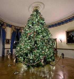 Baltieji rūmai pasipuošė Kalėdoms: šį kartą – itin patriotiškai
