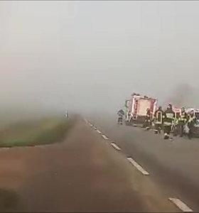 Prie Šakių – tragiška avarija: po susidūrimo su vilkiku žuvo automobilio vairuotojas