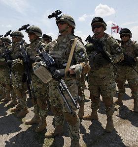 Sakartvelas yra visiškai pasiruošęs įstoti į NATO, sako premjeras