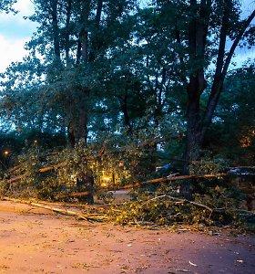Sekmadienį ugniagesiai 26 kartus vyko šalinti vėjo nulaužtų medžių