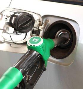 Naftos kainų kritimas gali mažinti degalų kainas, bet džiaugtis nereikėtų