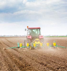 Žemės mokestis šiemet bus didesnis, nebent pasistengs savivaldybės
