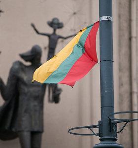 Seimo kanceliarija neturi darbuotojų vėliavų kilnojimui – tai daro pasamdyta įmonė