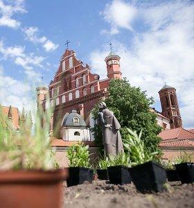 Turistų lankomas A.Mickevičiaus skveras sostinėje paskęs gėlėse