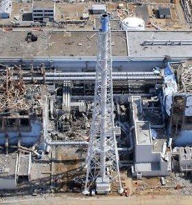 Japonijoje skundžiamas teismo sprendimas išteisinti buvusius TEPCO vadovus dėl Fukušimos