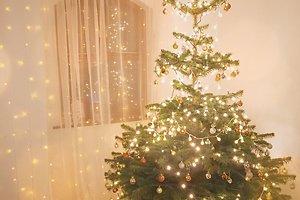 Loretos B. (Panevėžys) kalėdinė dekoracija