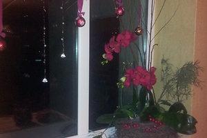 Editos K. (Pasvalio raj.) kalėdinė dekoracija