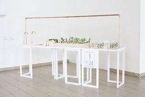 Agnė Vyšniauskaitė: T-LAB gyva lietuviškos arbatos laboratorija