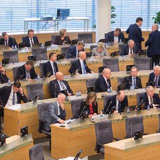 Referendumas dėl Seimo narių skaičiaus mažinimo 2019