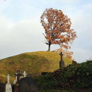Betygalos kapinės