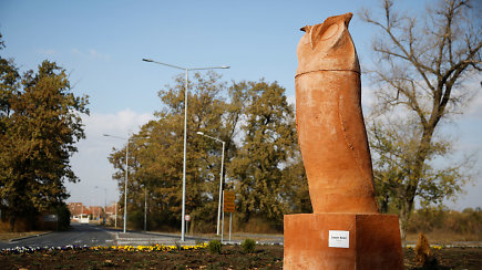 Falas ar pelėda: nesutariama dėl Serbijos miestelio simbolio
