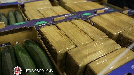 Sulaikyti daugiau nei 300 kg hašišo slėpti po agurkais