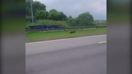 Nufilmuotos šuns gaudynės greitkelyje prie Kauno